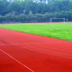 sports-215049_640