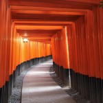 -shared-img-thumb-GAK92_fusimiinari_TP_V
