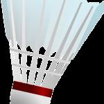 badminton-159415_640